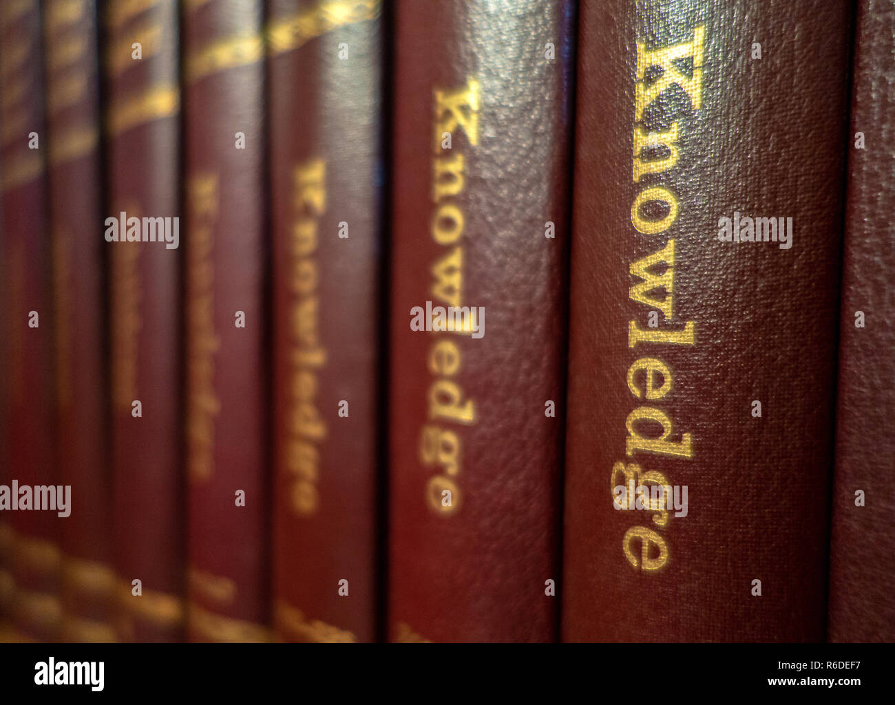 Closeup of a Set of The New World Library of Knowledge Books illustrated Encyclopedia's on a book shelf in an English house - Stock Image