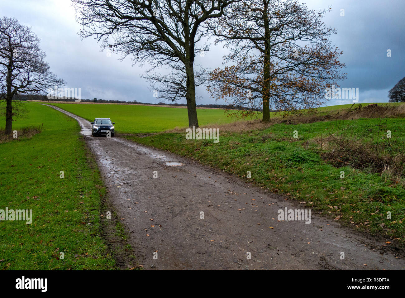 Young woman walking a German Shepherd dog stands and waits for a passing farmers car on The Pennine Way Trail in England - Stock Image