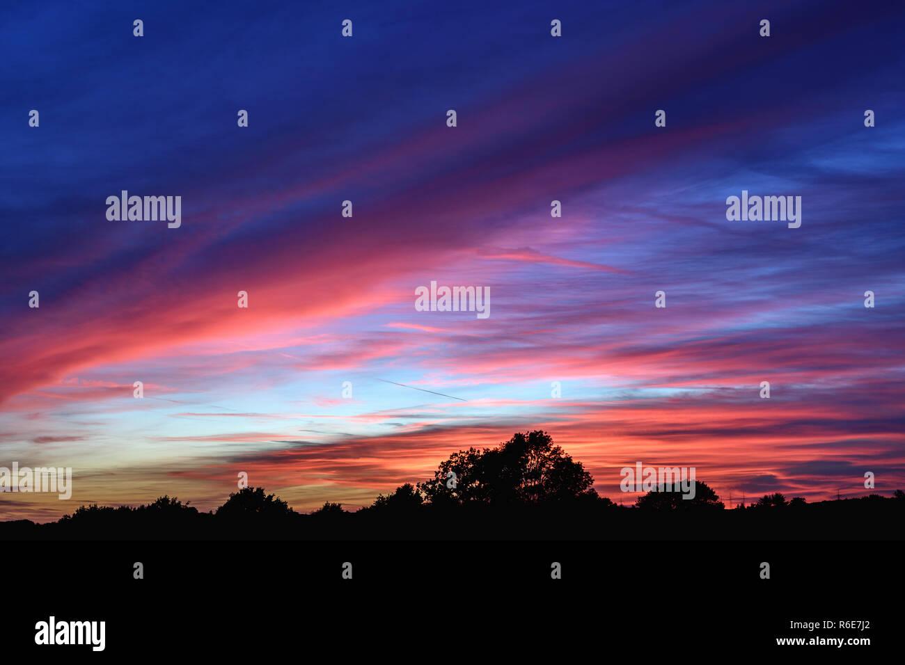 Blaue Stunde nach Sonnenuntergang blau roter Himmel über Bäumen - Stock Image