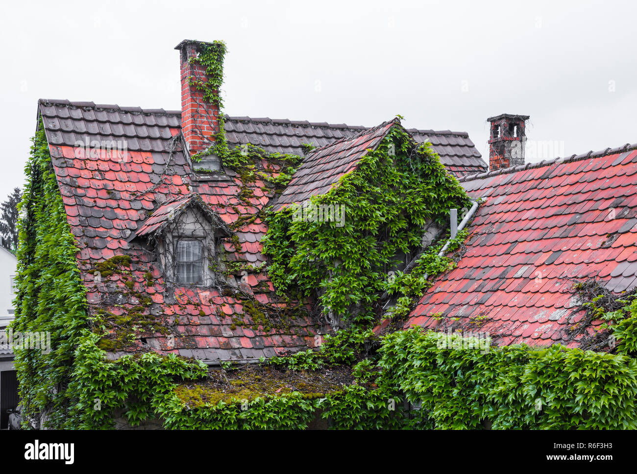 overgrown roof of an old house Stock Photo