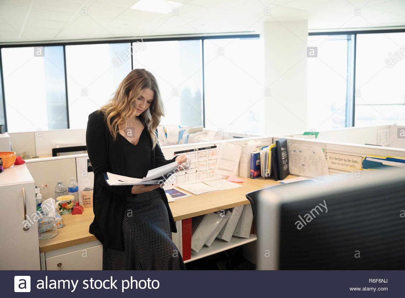 Businesswoman reviewing paperwork in office cubicle - Stock Image