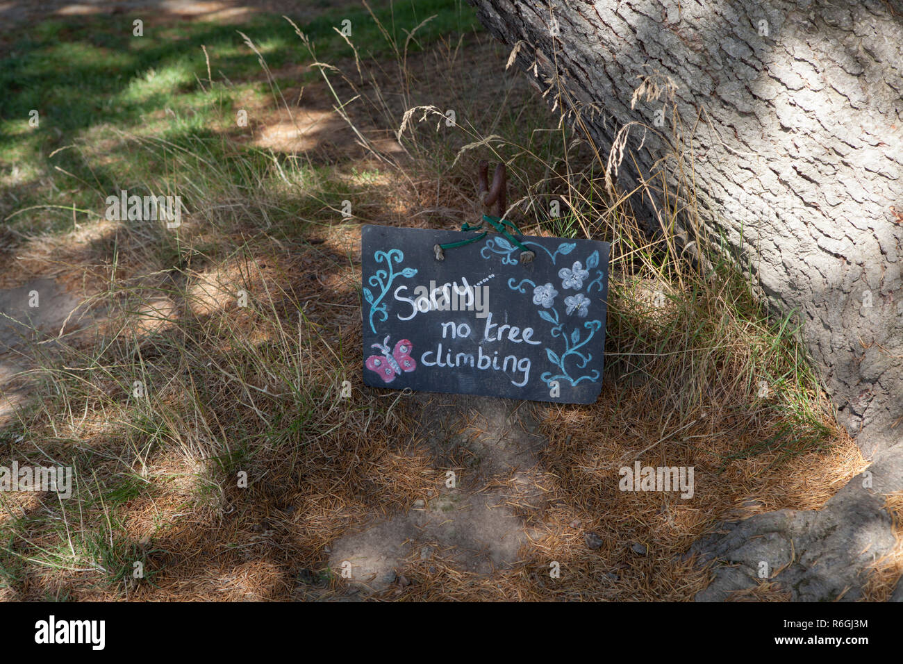 A hand written sign saying Sorry No Tree Climbing - Stock Image