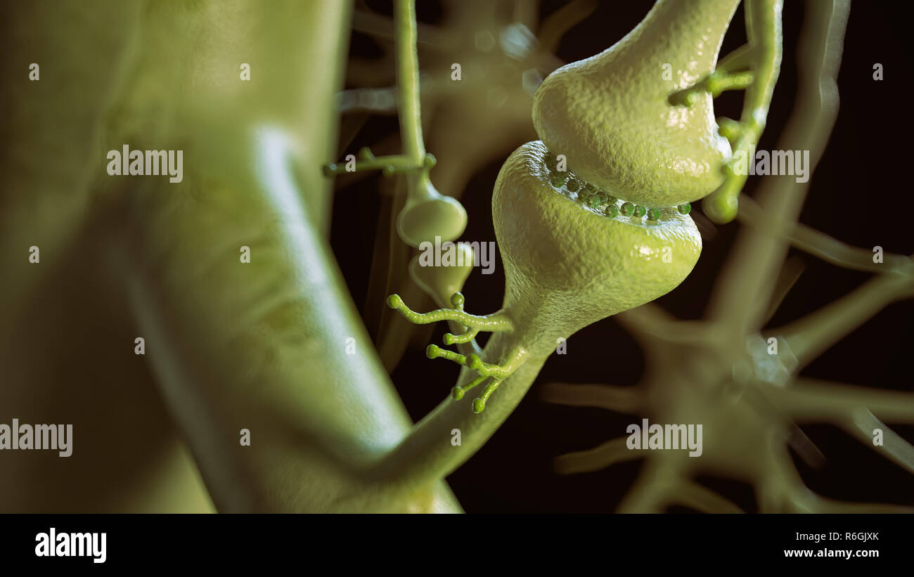 synaptic contacts between neurons- 3D Rendering - Stock Image