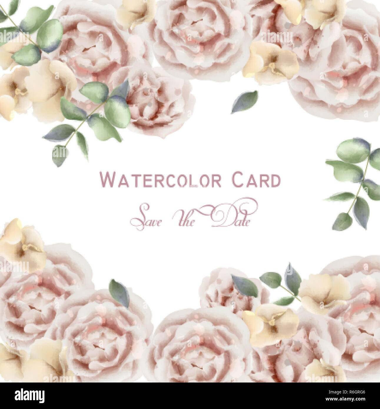 Delicate Pink Roses Vector Watercolor Background Elegance Flowers