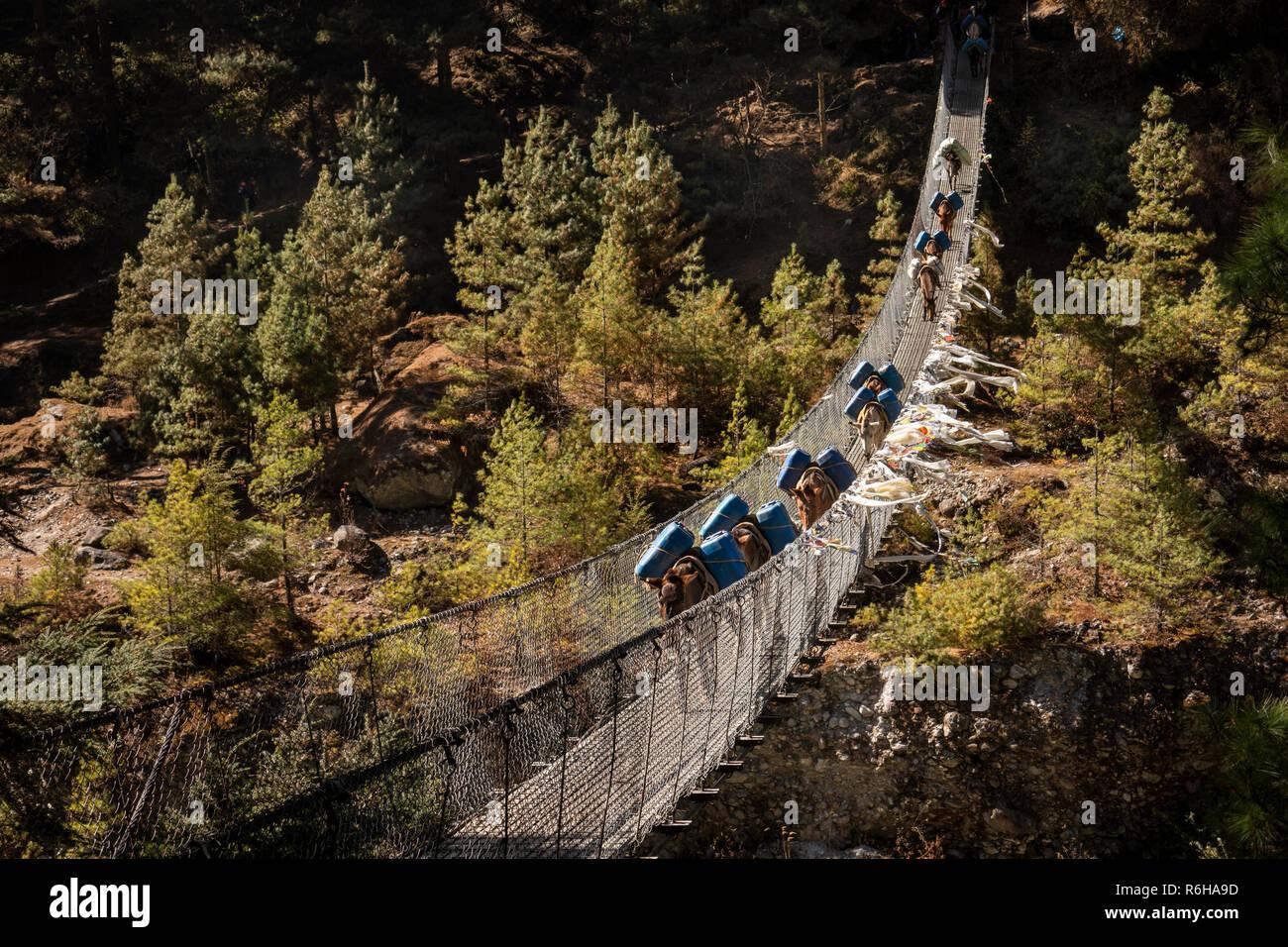 Nepal, Jorsale (Thumbug), mule train crossing suspension bridge to Namche Bazaar over Dudh Khosi river - Stock Image