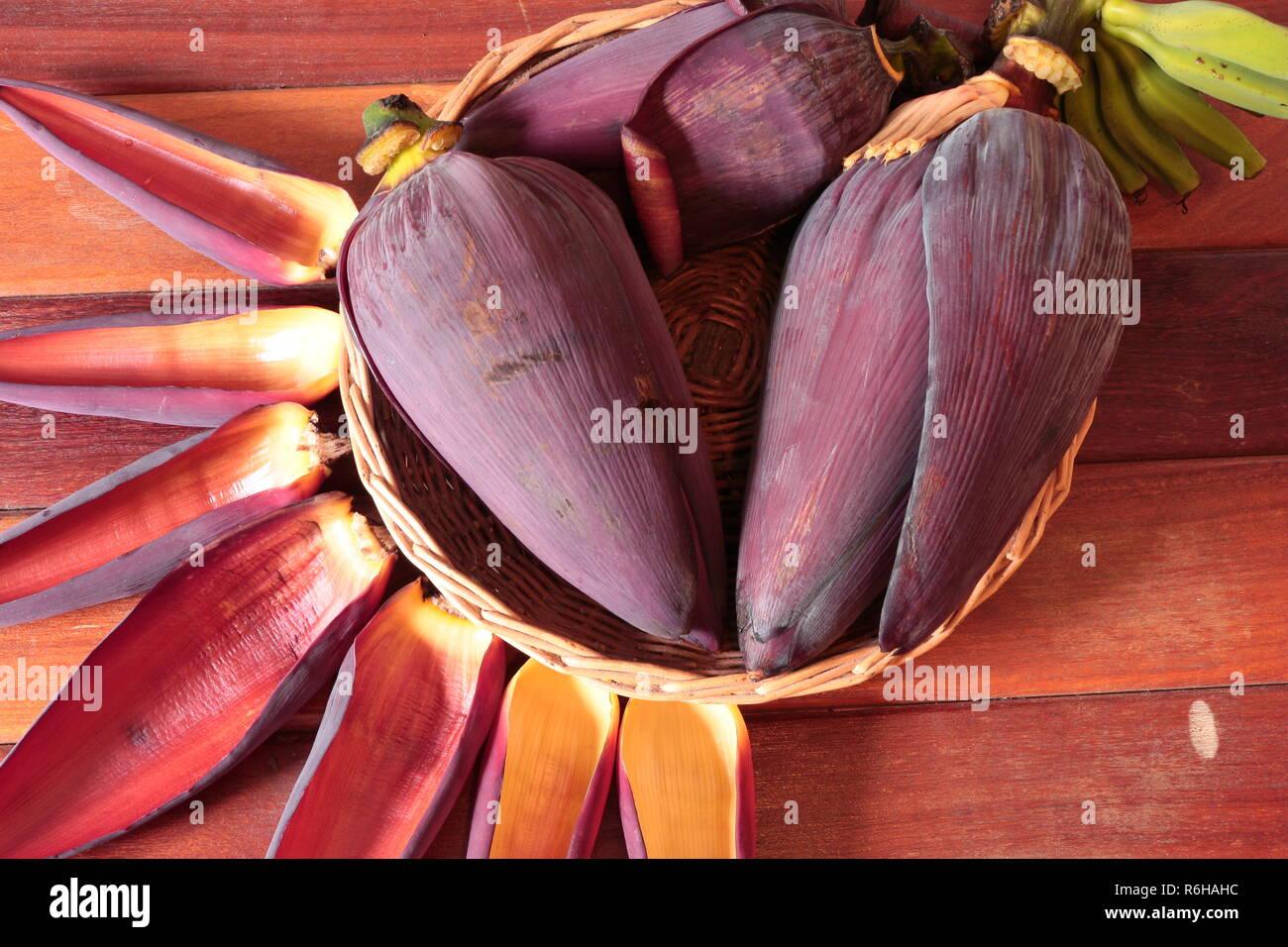 Non Edible Plants Stock Photos Non Edible Plants Stock Images