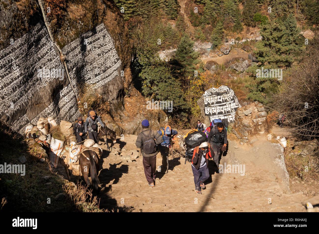 Nepal, Monju, (Manjo) large carved Buddhist mani stones beside steep stone path at northern end of village - Stock Image