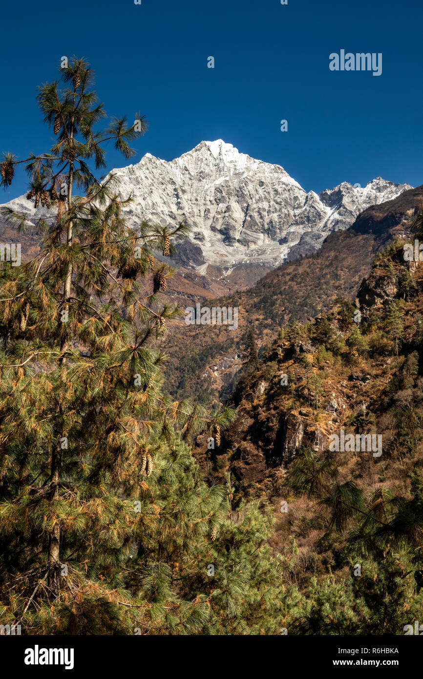 Nepal, Phakding, Solo Khumbu region Mt Kusum Kangkaru and Thado Koshi River Valley - Stock Image