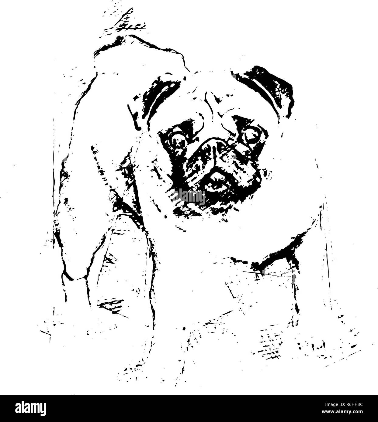 A beautiful pug stands in the meadow -  Illustration - Stock Image