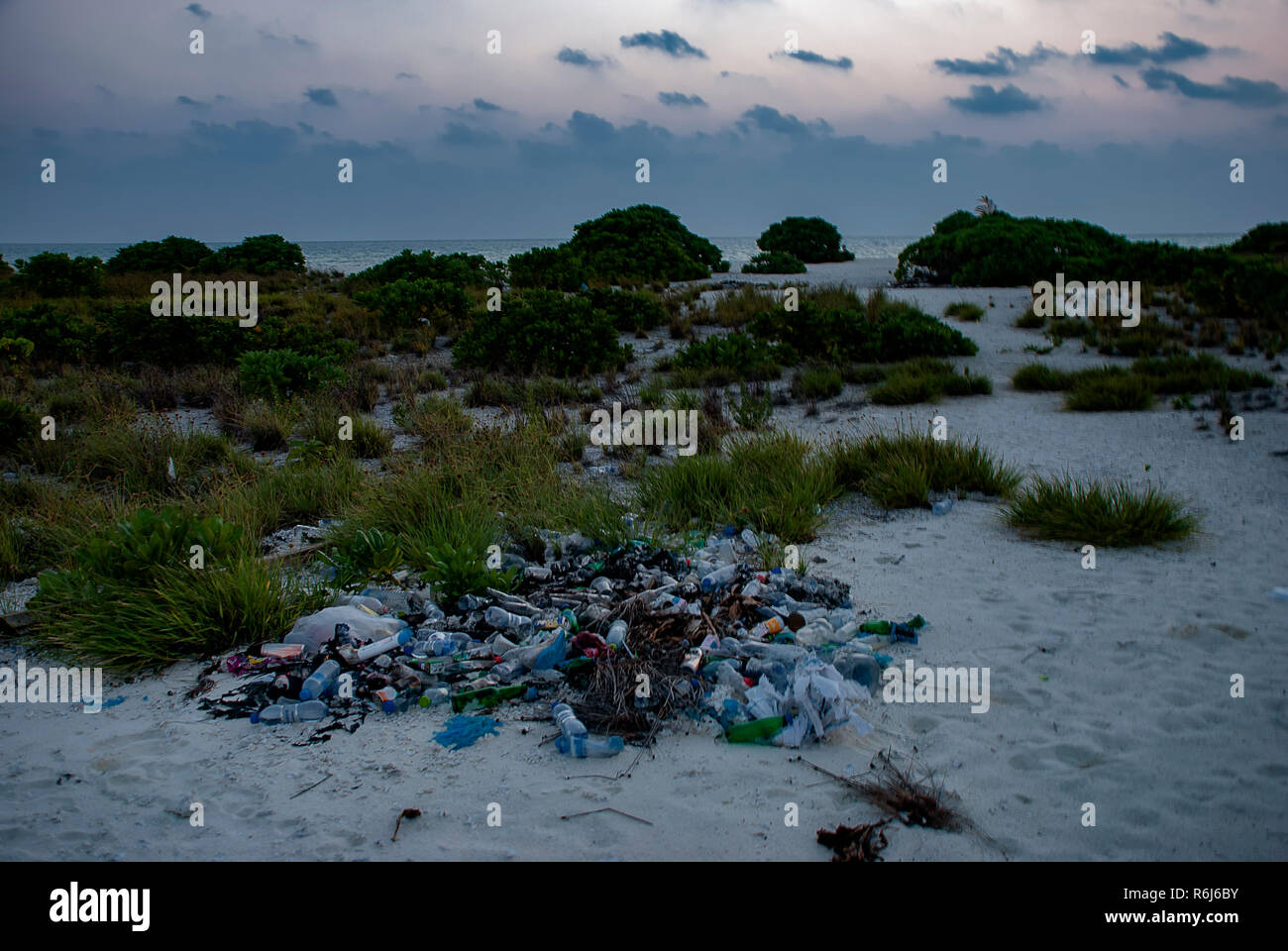 Litter on a tropical uninhabited island in the Indian Ocean - Stock Image