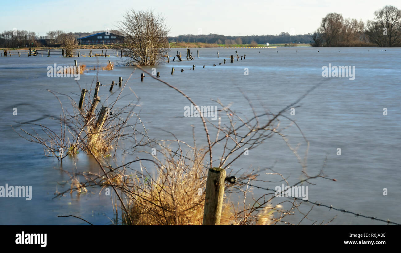 Bare and weathered branches above the water surface in a flooded area next to a wide Dutch river. It is in the end of the winter season. Stock Photo