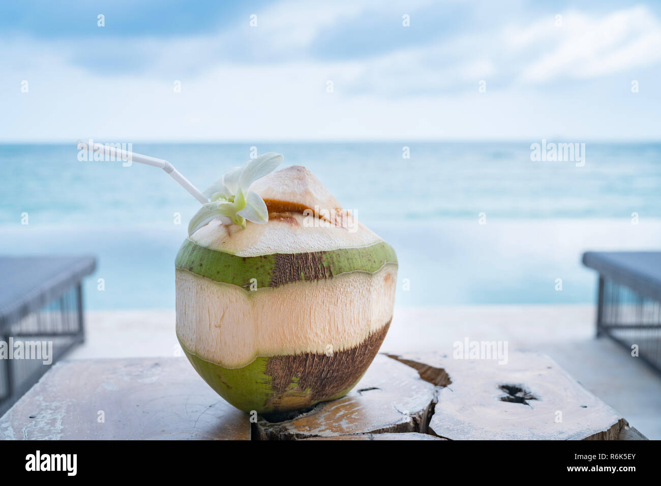 Tropical coconut drink in the shell, opened with straw and white frangipani flower. - Stock Image