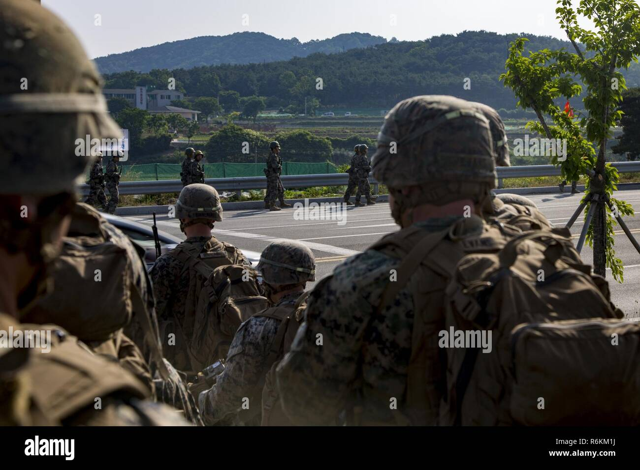 U.S. Marines and Sailors with India Company, 3rd battalion, 8th Marines, forward deployed to the 3rd Marine Division, as part of the forward Unit Deployment Program, observe Republic of Korea Marines hiking on Camp Mujuk, South Korea. May 29, 2017. This is the first time that most of the marines have ever seen Republic of Korea Marines. Stock Photo