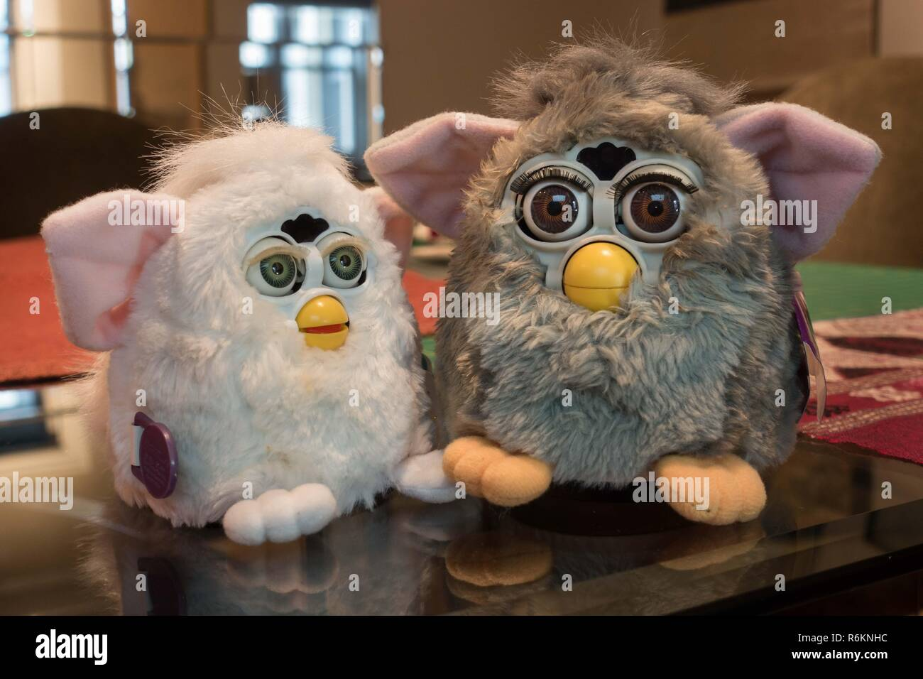 Original Furby and Furby baby (white), must-have intelligent speaking toys from 1998 and 1999 (baby), made by Tiger electronics, await conversation. - Stock Image