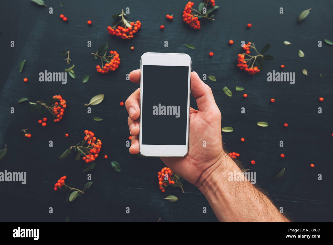 Fruit Chat Stock Photos & Fruit Chat Stock Images - Alamy