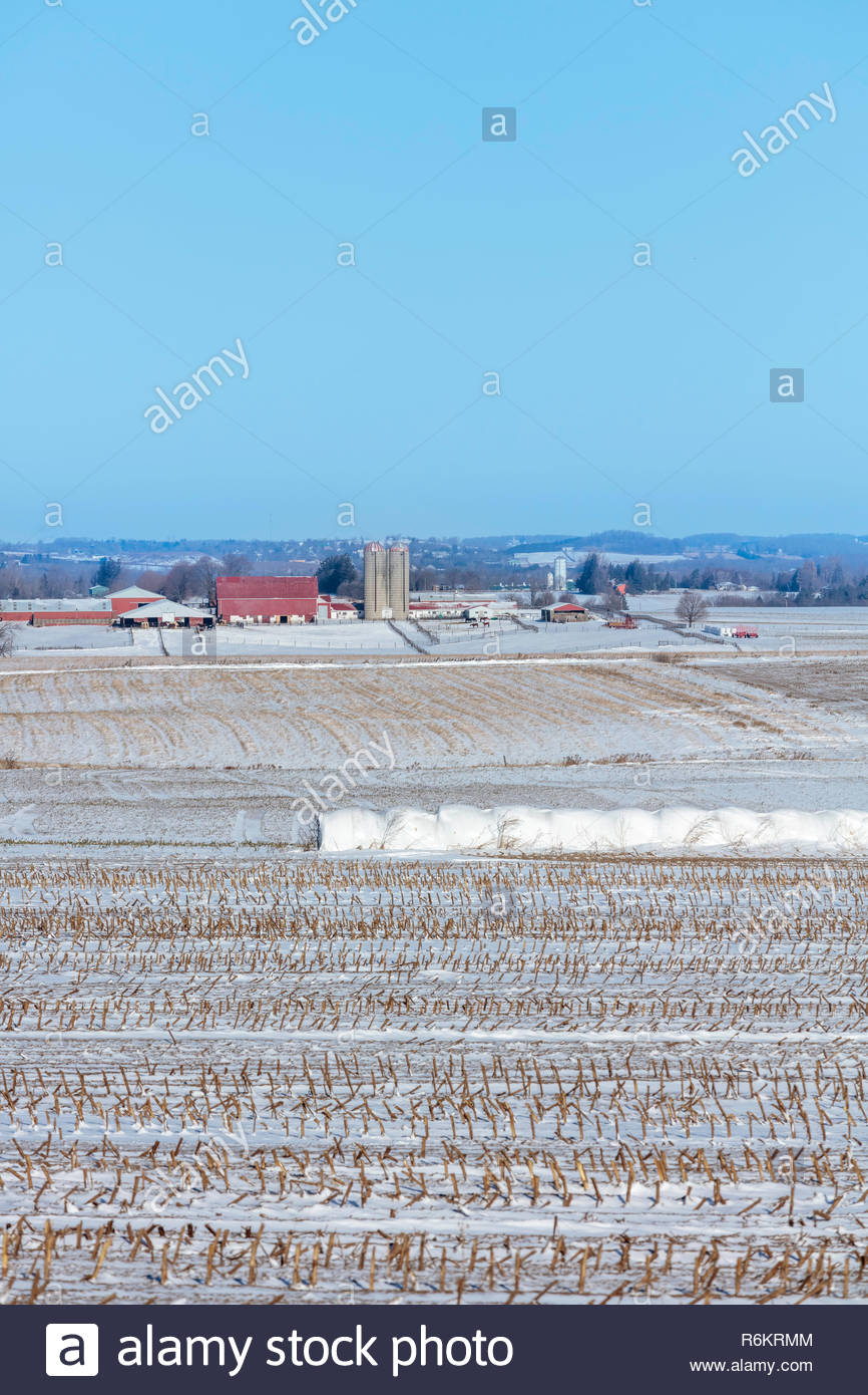 Farm fields covered with the first snow of winter on the Oak Ridges Moraine near Port Perry in Ontario Canada Stock Photo