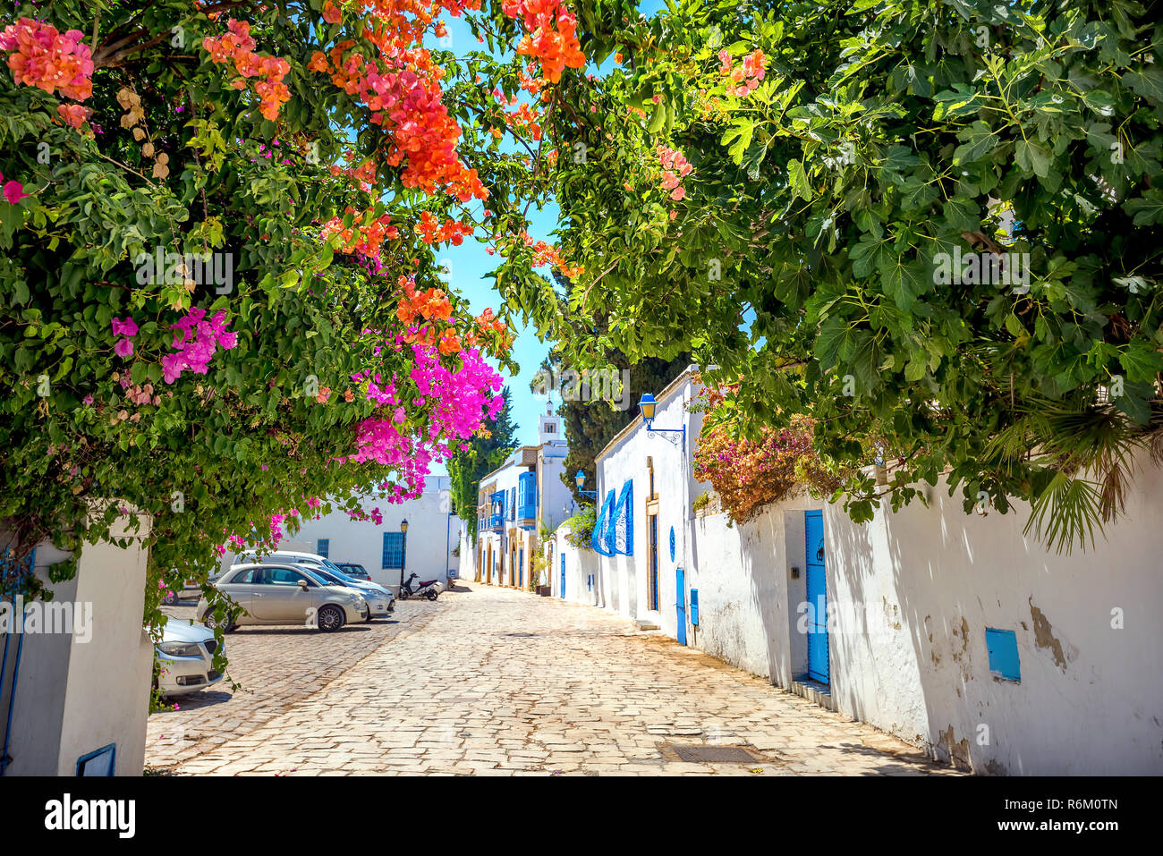 Street into focus on blossoming trees in blue and white town Sidi Bou Said. Tunisia, North Africa - Stock Image