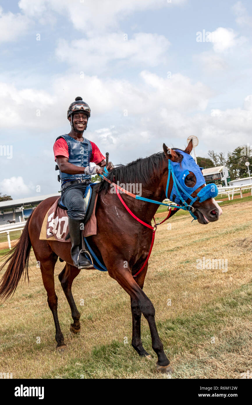 Exercising a race horse at Garrison Savannah, Historic horse racing venue with an oval grass track & traditional Barbadian food for sale. - Stock Image