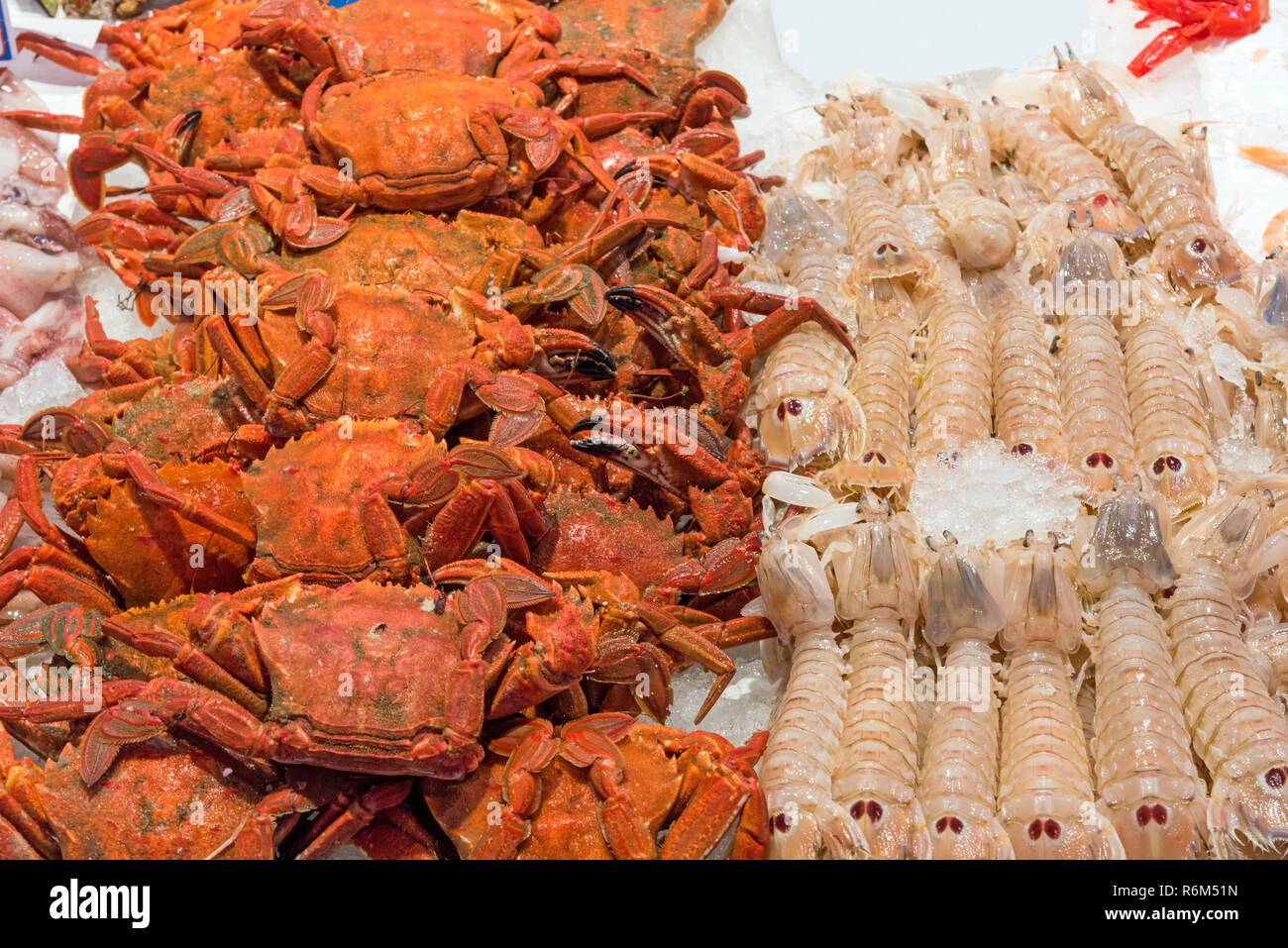 crayfish and lobsters on a market in madrid - Stock Image