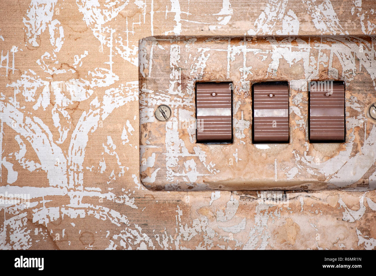 retro light switches and wall paper - Stock Image