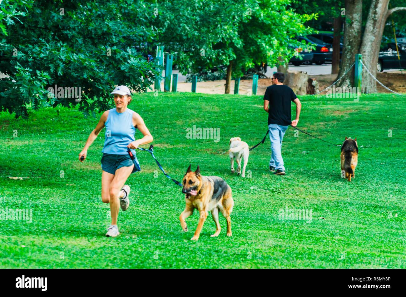 Pet owners walk their dogs at Candler Park, June 4, 2014, in Atlanta, Georgia. - Stock Image