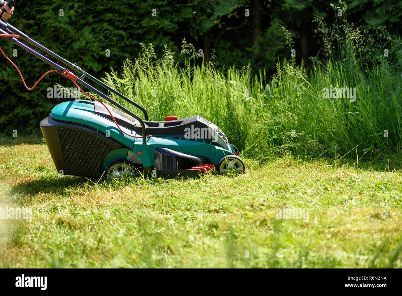 Man cutting grass with  an electro lawnmower in his garden Stock Photo