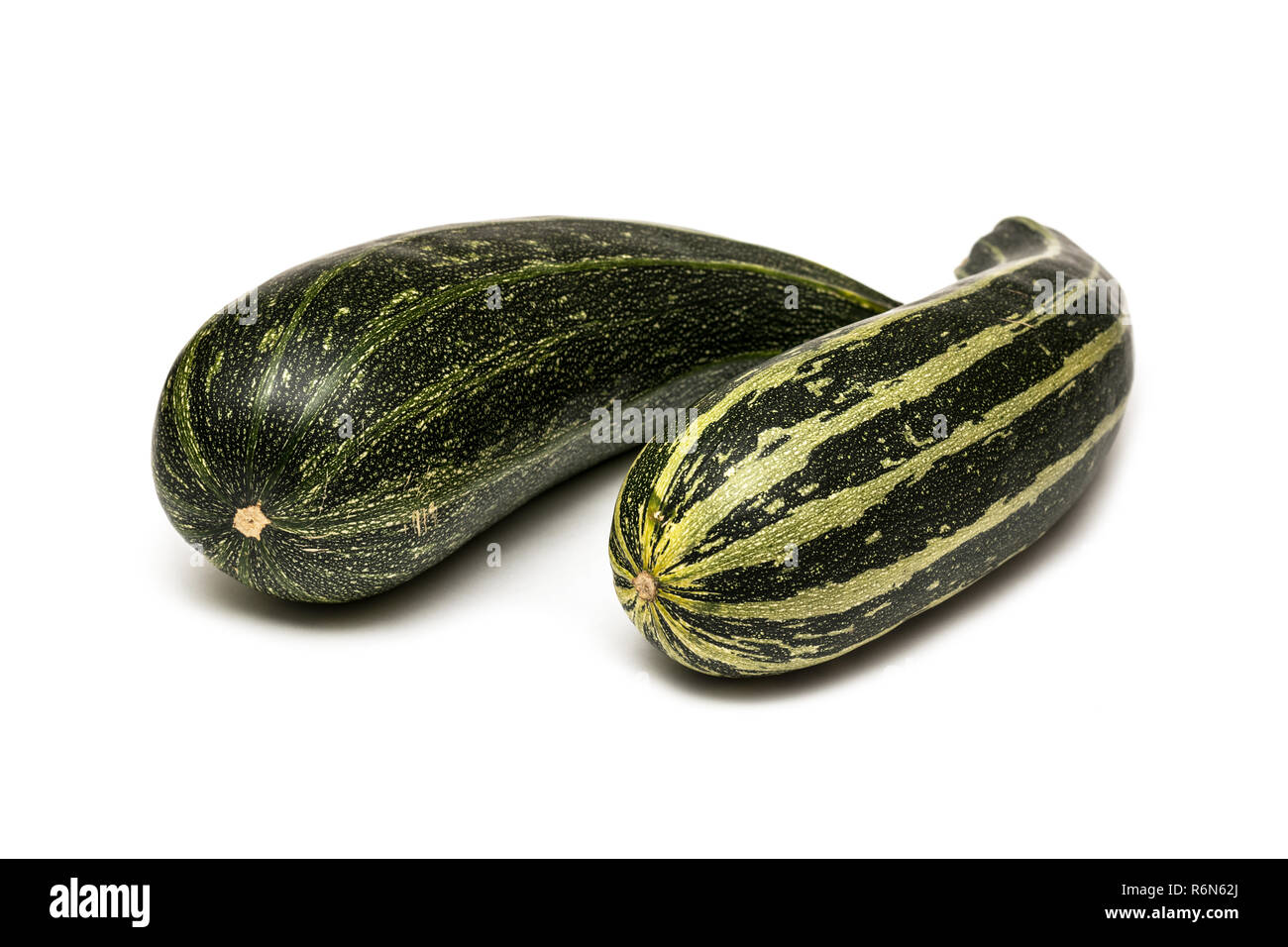 Zucchini on a white background - Stock Image