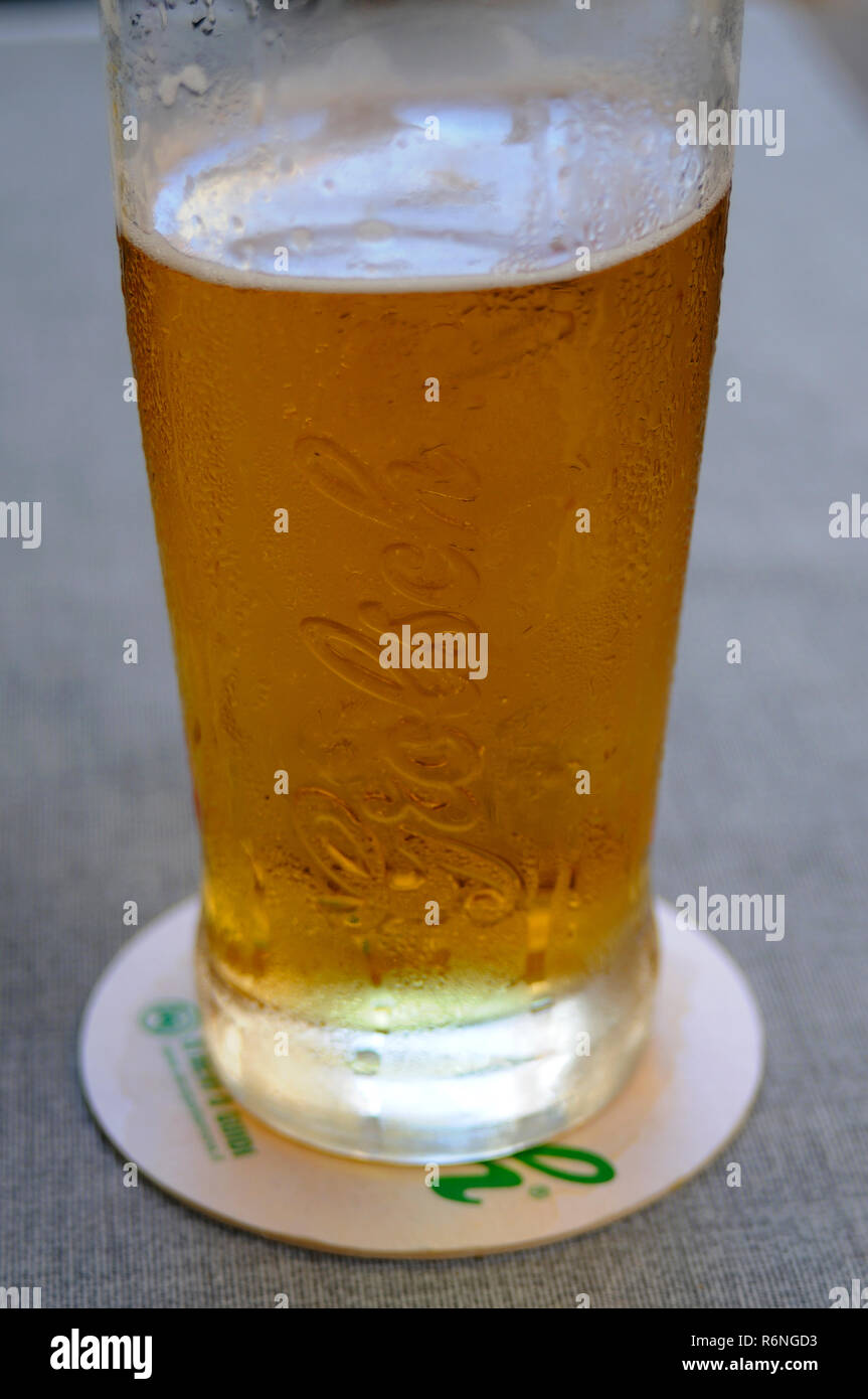 Large glass of Grolsch lager - Stock Image