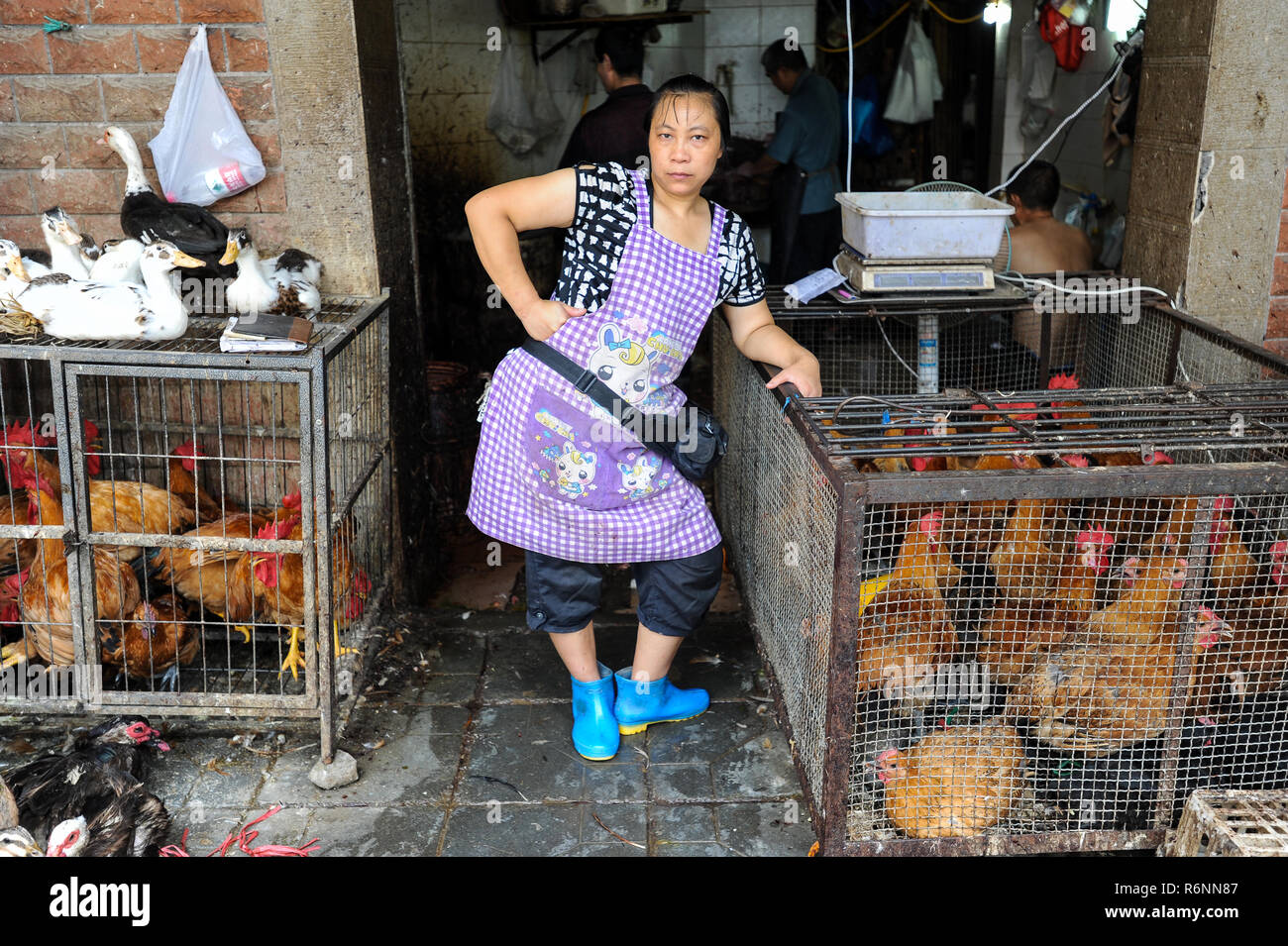 04.08.2012, Chongqing, China, Asia - A female butcher is standing in front of a butcher shop that sells poultry. Stock Photo