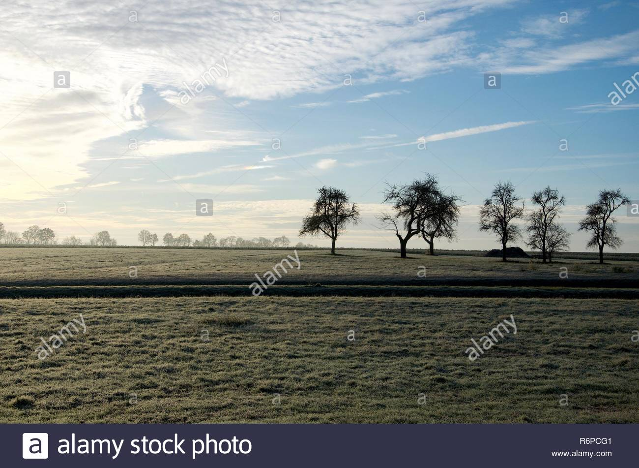A frosty morning after sunrise in the countryside of Bavaria in Germany, rime on the field, silhouette of trees on horizon - Stock Image
