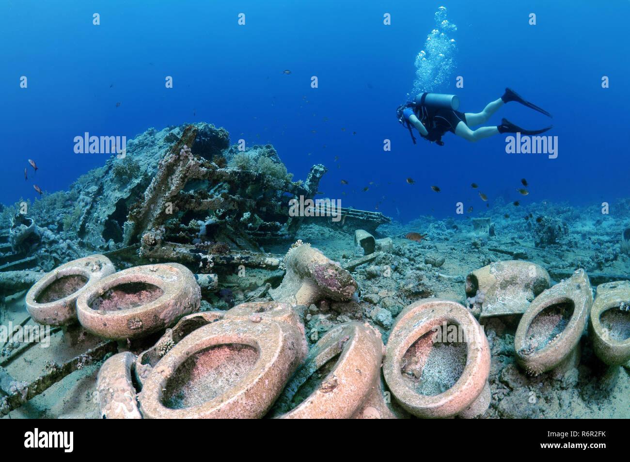 Male Scuba diver looking at the toilets on the Wreck of Yolanda, Shark Yolanda reef, Ras Mohammed national park, Sinai, Sharm el-Sheikh, Red sea, Egyp - Stock Image