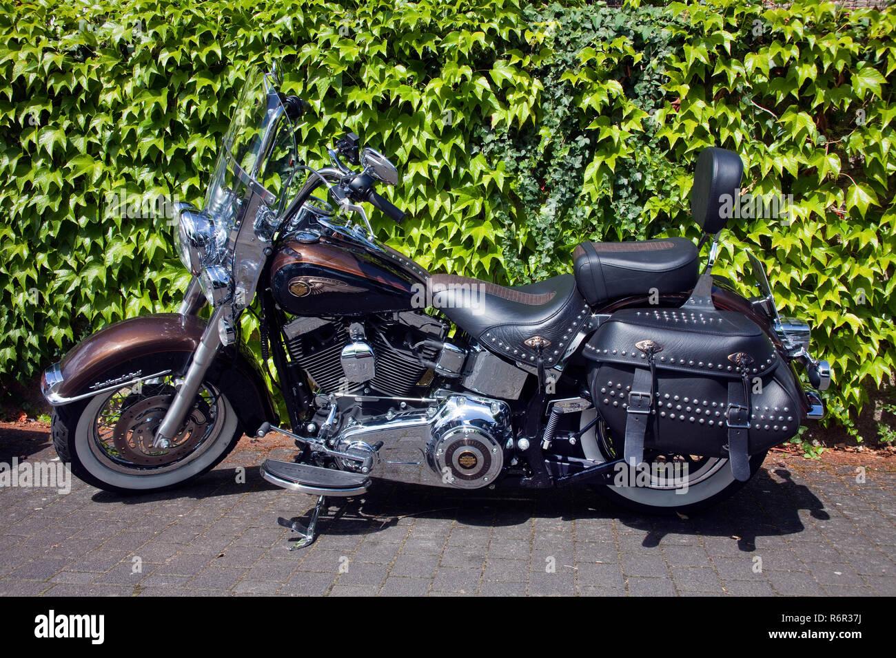 Harley & Wein in Uerzig, Harley-Treffen zum Weinfest, mehr als 1000 Harley Davidson in Uerzig, Mittelmosel, Rheinland-Pfalz, Landkreis Bernkastel-Witt - Stock Image