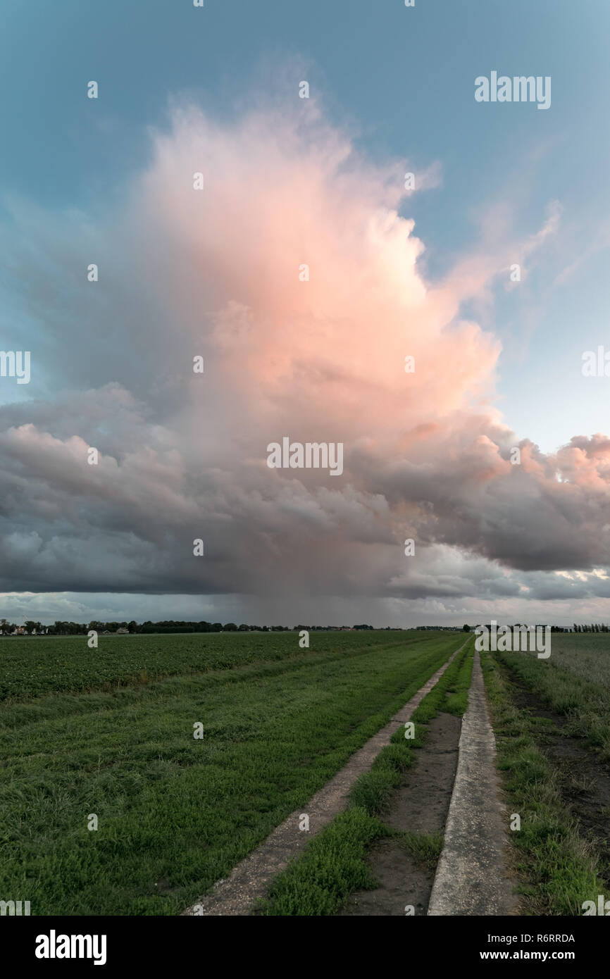 Isolated storm over the dutch countryside at sunset. The sun casts his last colorful light on this Cumulonimbus cloud. Occasionaly thunder was heard. - Stock Image