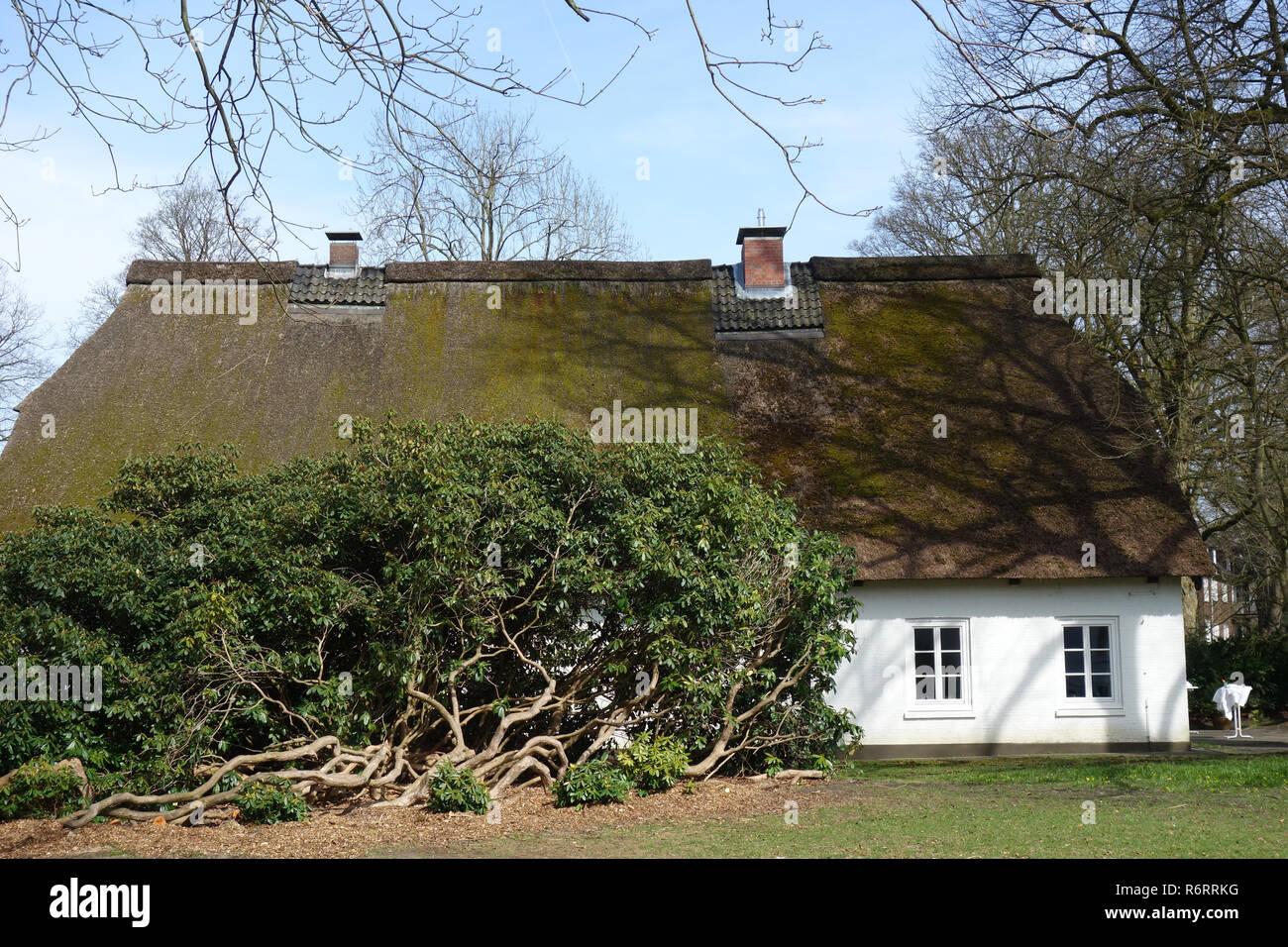 guesthouse witthüs in hirschpark in hamburg nienstedten Stock Photo