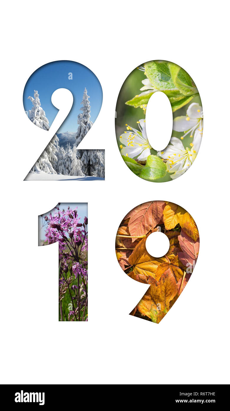 Number 2019 from four seasons photos for calendar, flyer, poster, postcard, banner. Vertical image. - Stock Image