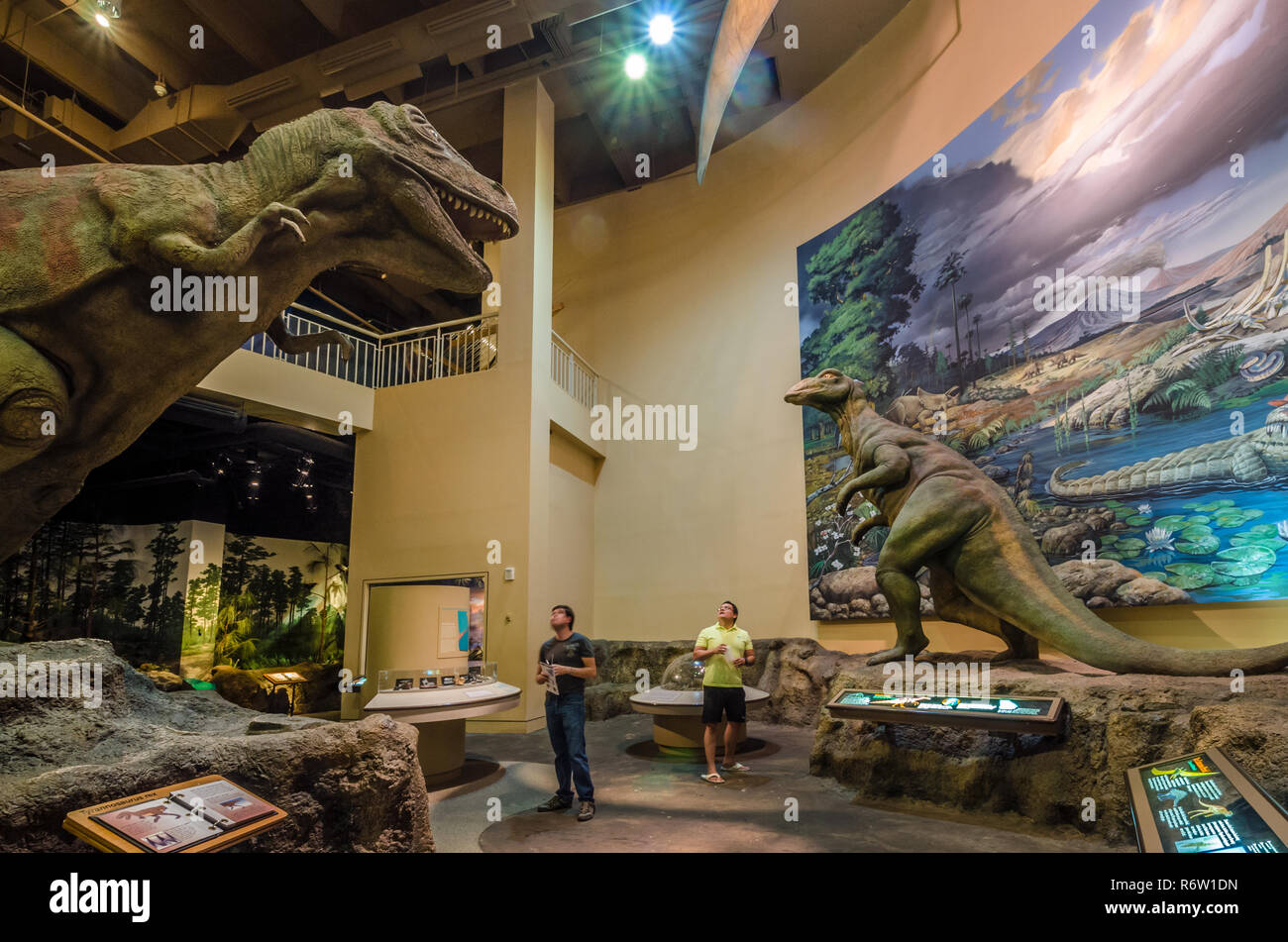 Vladimir Salgado and David Brado look at a dinosaur that is displayed at Fernbank Museum of Natural History in Atlanta, Georgia. - Stock Image
