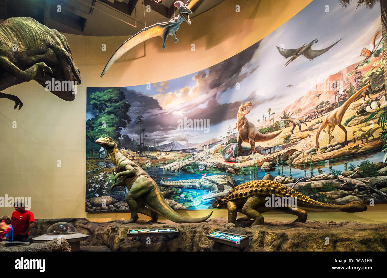 Visitors walk through the dinosaur gallery at Fernbank Museum of Natural History, May 23, 2014, in Atlanta, Georgia. - Stock Image