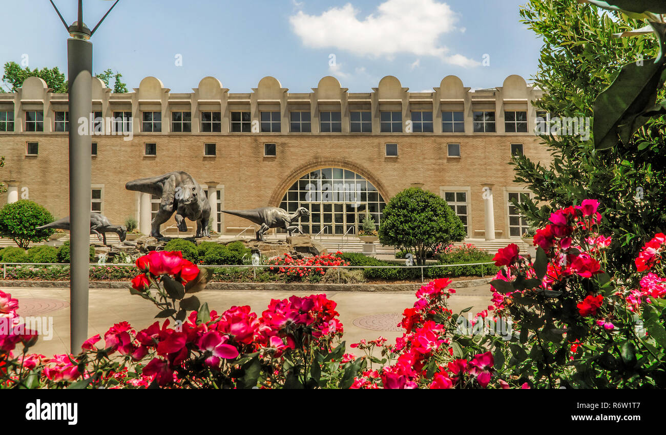 Flowers bloom in front of the Fernbank Museum of Natural History and Dinosaur Plaza, in Atlanta, Georgia, May 23, 2014. - Stock Image