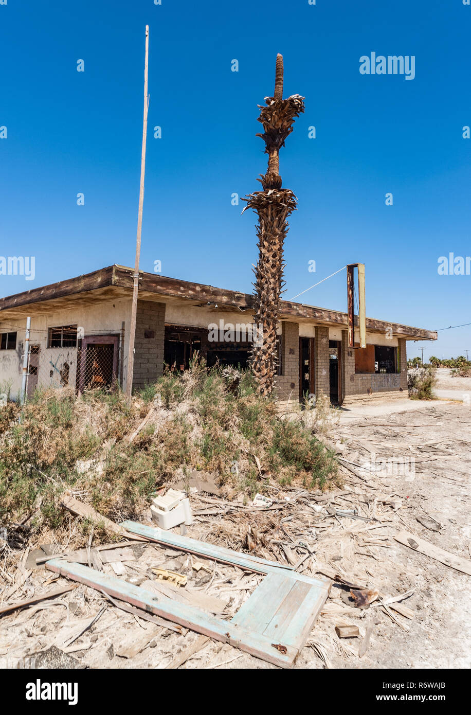Abandonned building ruins and dead palm tree in the post apocaliptic landscape of the Salton sea in southern California - Stock Image