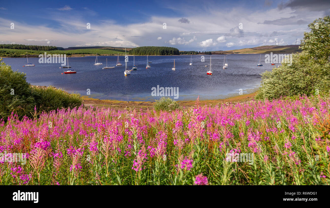 Boats moored on Llyn Brenig reservoir, North Wales on a windy day Stock Photo