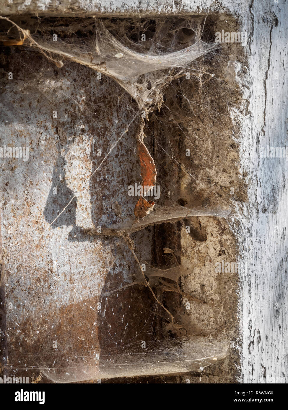 Cobwebs in a dirty wall corner with lots of dust - Stock Image
