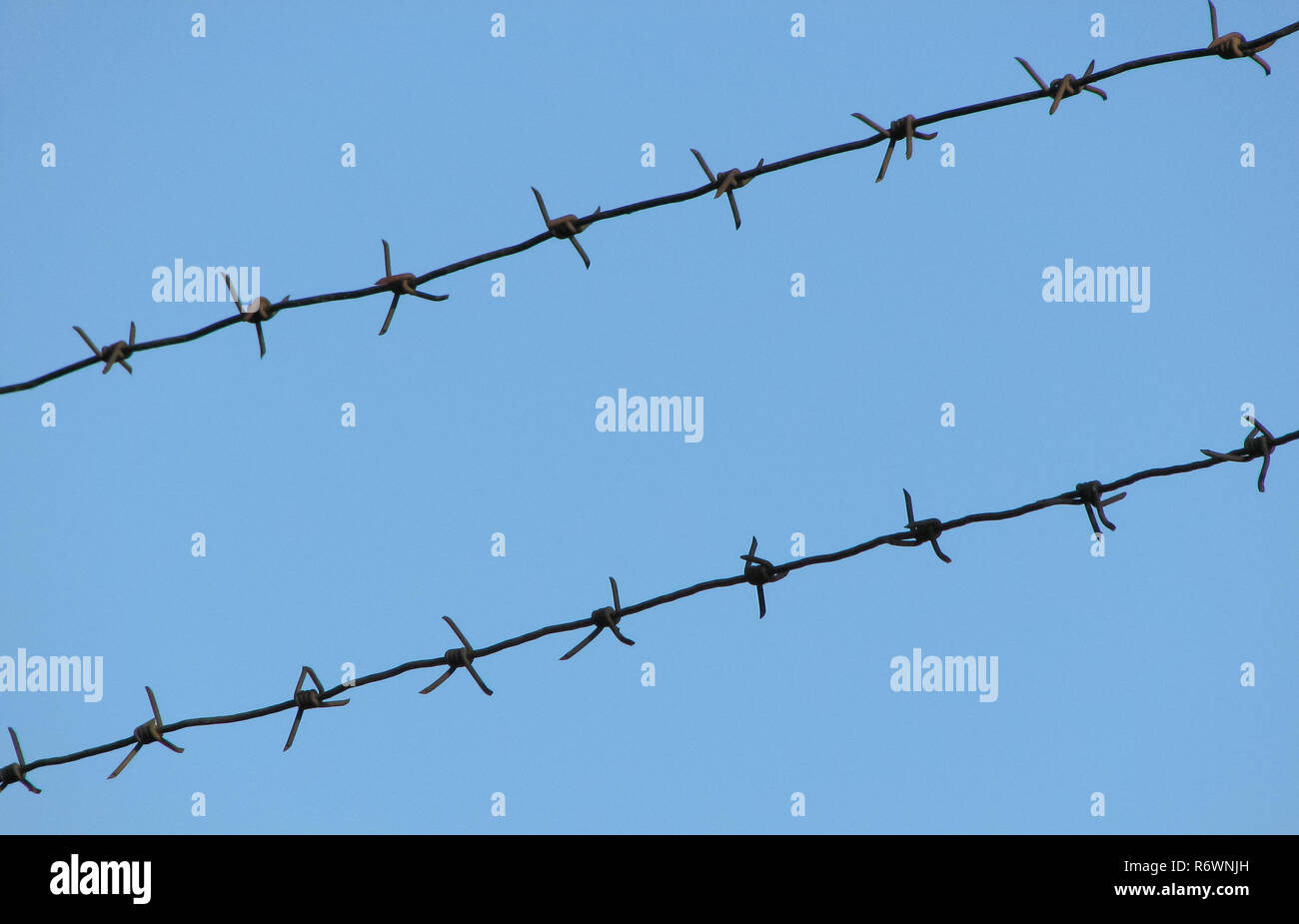 Old rusty barbed wire on a blue sky Stock Photo