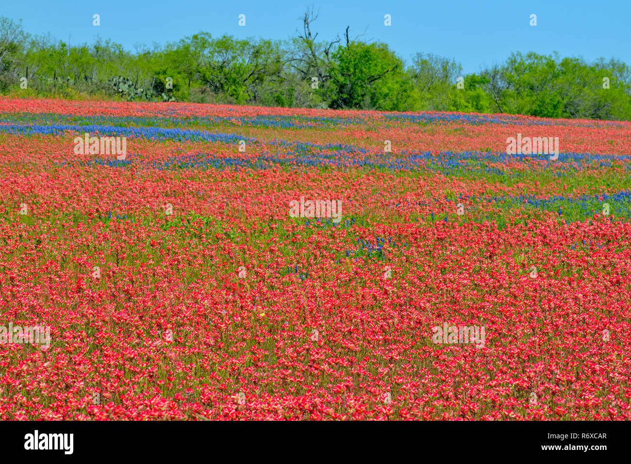 Page 2 476 High Resolution Stock Photography And Images Alamy