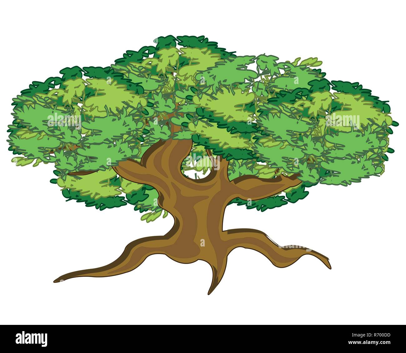 Tree Root Illustration High Resolution Stock Photography And Images Alamy A branch with green leaves. https www alamy com vector illustration big and curly tree summer image228037753 html