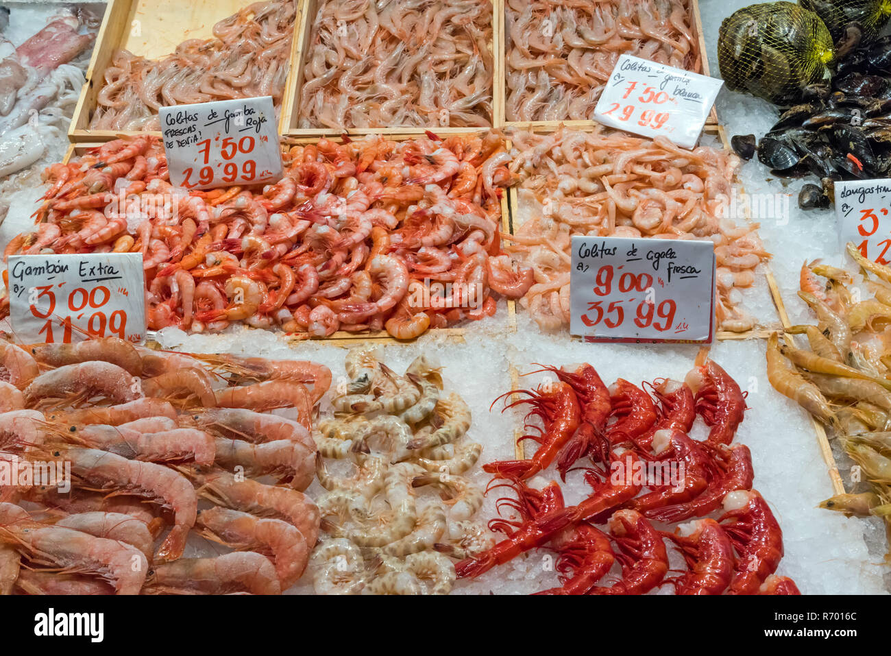 different types of shrimp for sale in a market - Stock Image