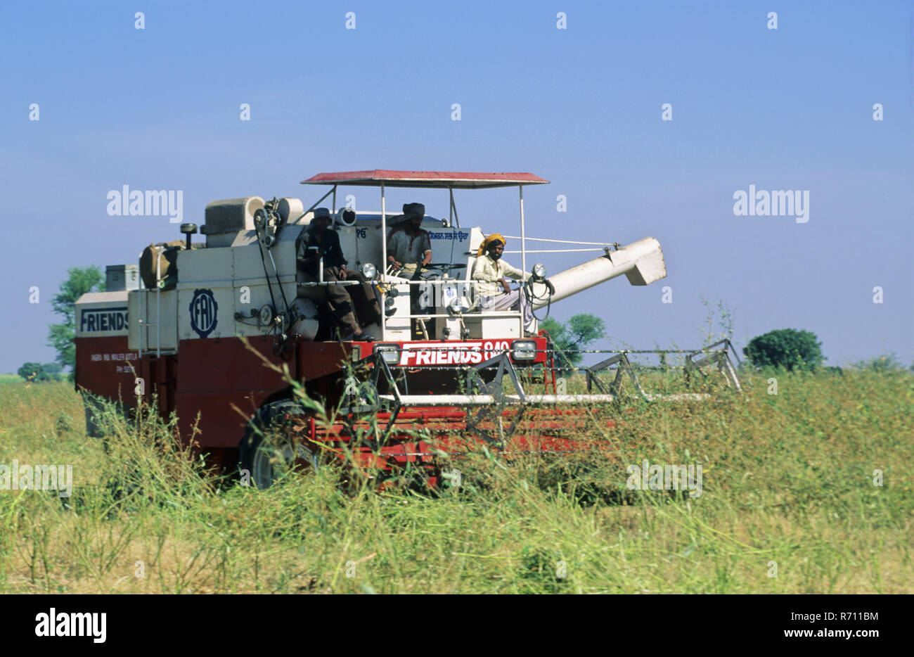 Combined Harvester using in Red Beans Field, Solapur, Maharashtra, India - Stock Image