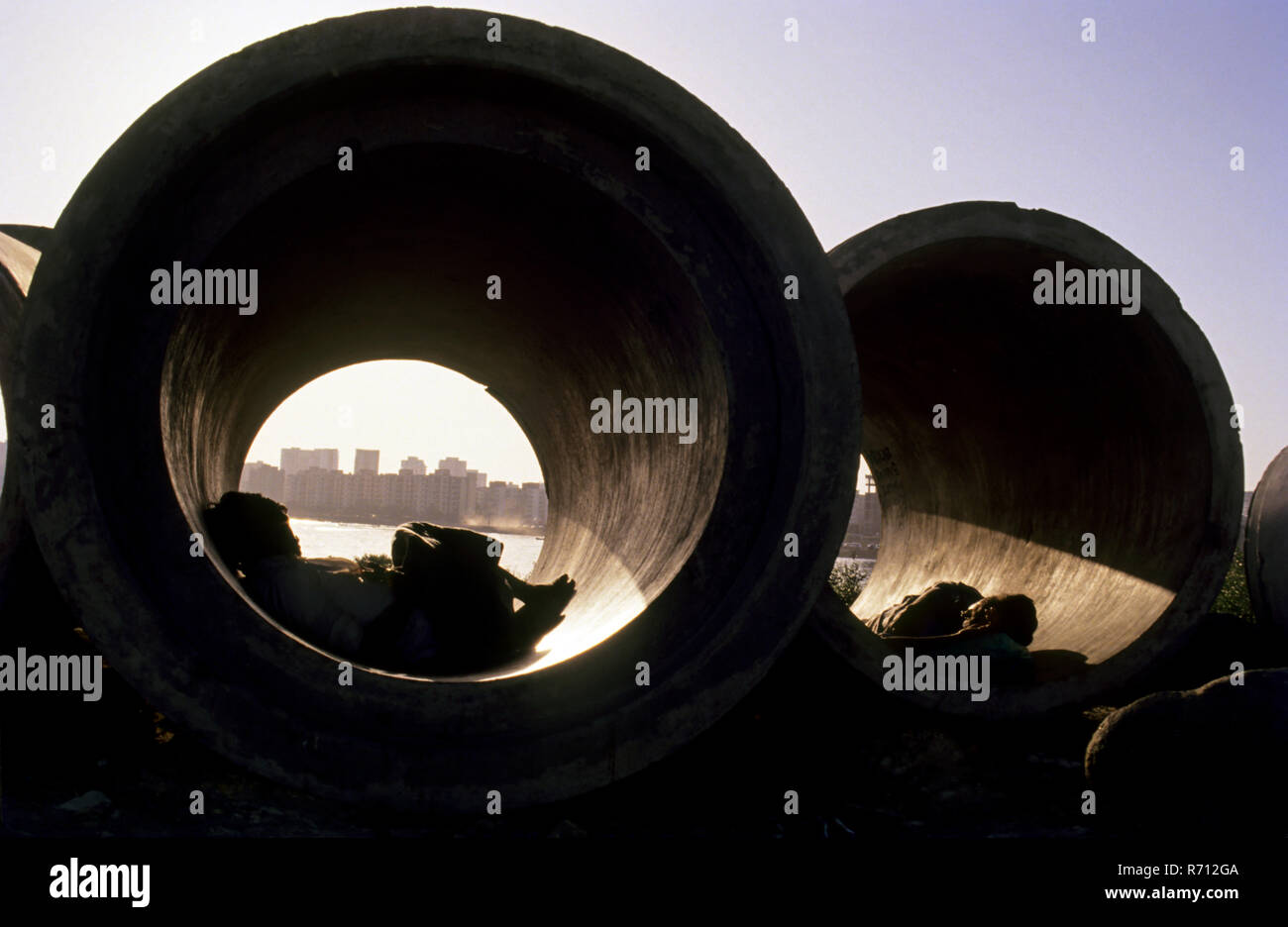 Sleeping In Drainage Pipe - Stock Image