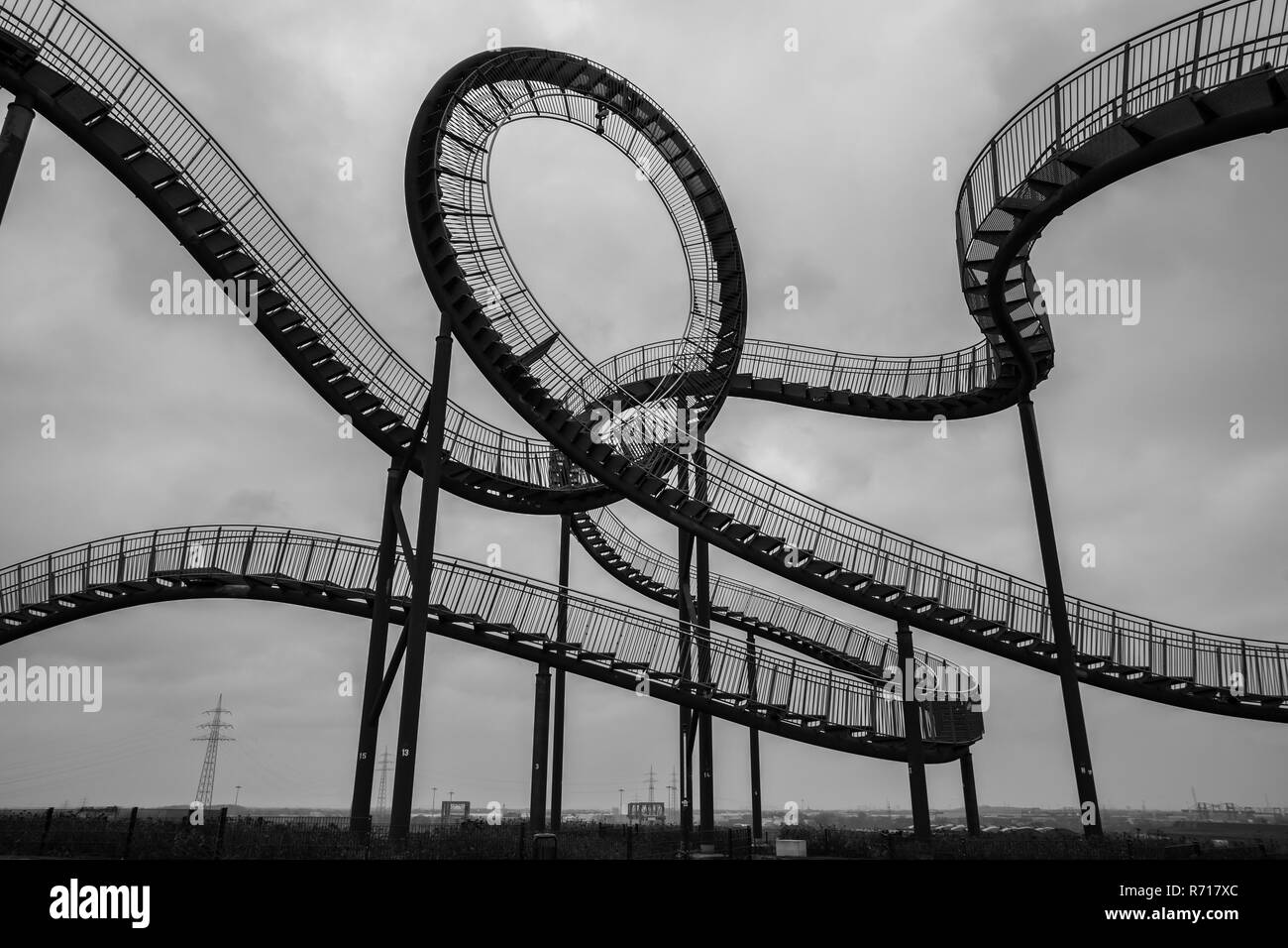 tiger and turtle sculpture duisburg germany in autumn black and white - Stock Image