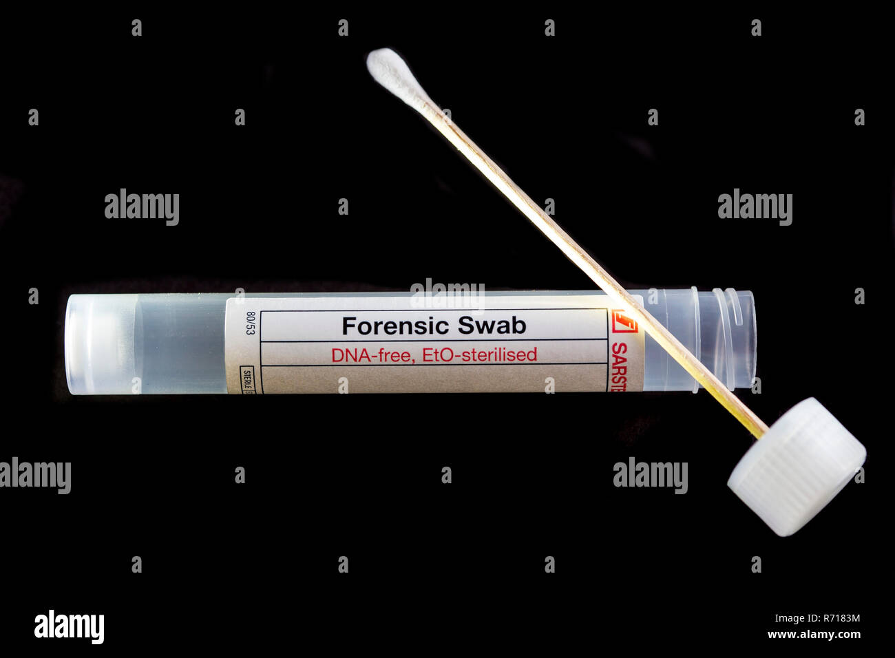 Forensic cotton swab for securing DNA, sterile, DNA trace analysis - Stock Image