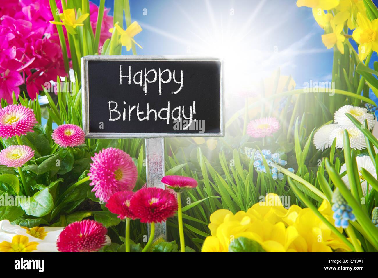 Sunny Spring Flower Meadow Happy Birthday Stock Photo 228067136 Alamy